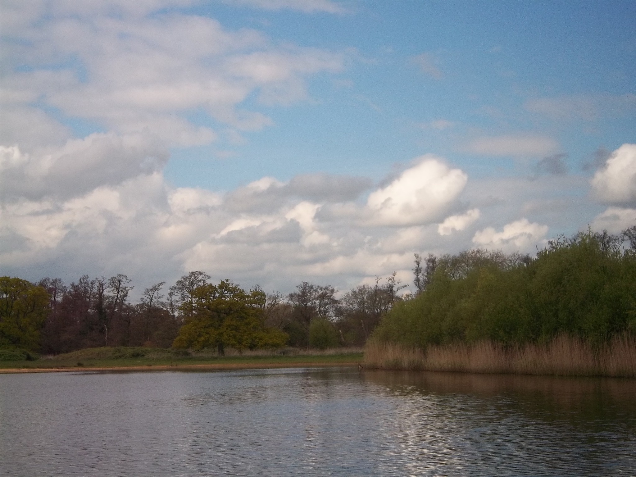 testwood lakes totton by traceybiddlecombe3666