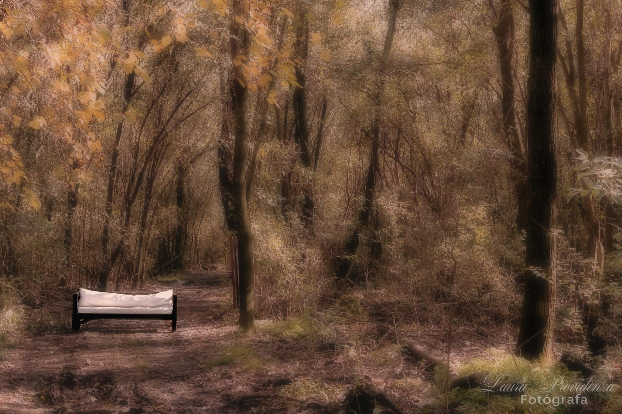 Bosque de ensueño by LauraProvidenza