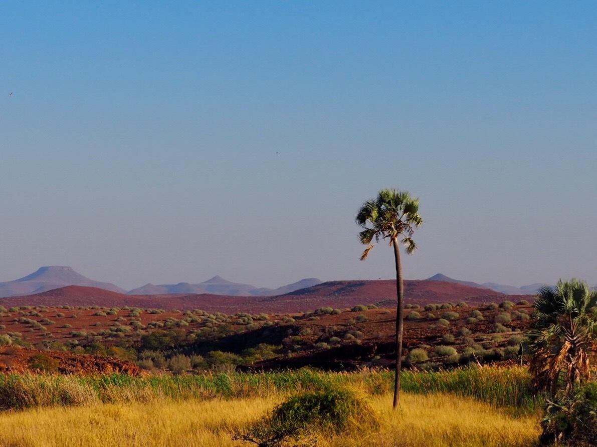 Africa calling  by kirsten.keun