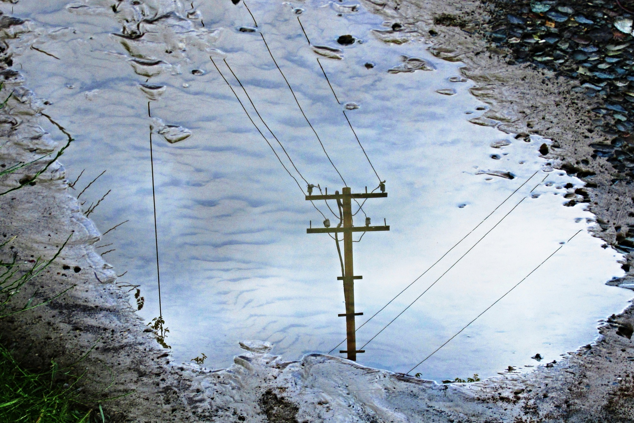 A Drowned Pole in a Puddle. by marcel cintalan