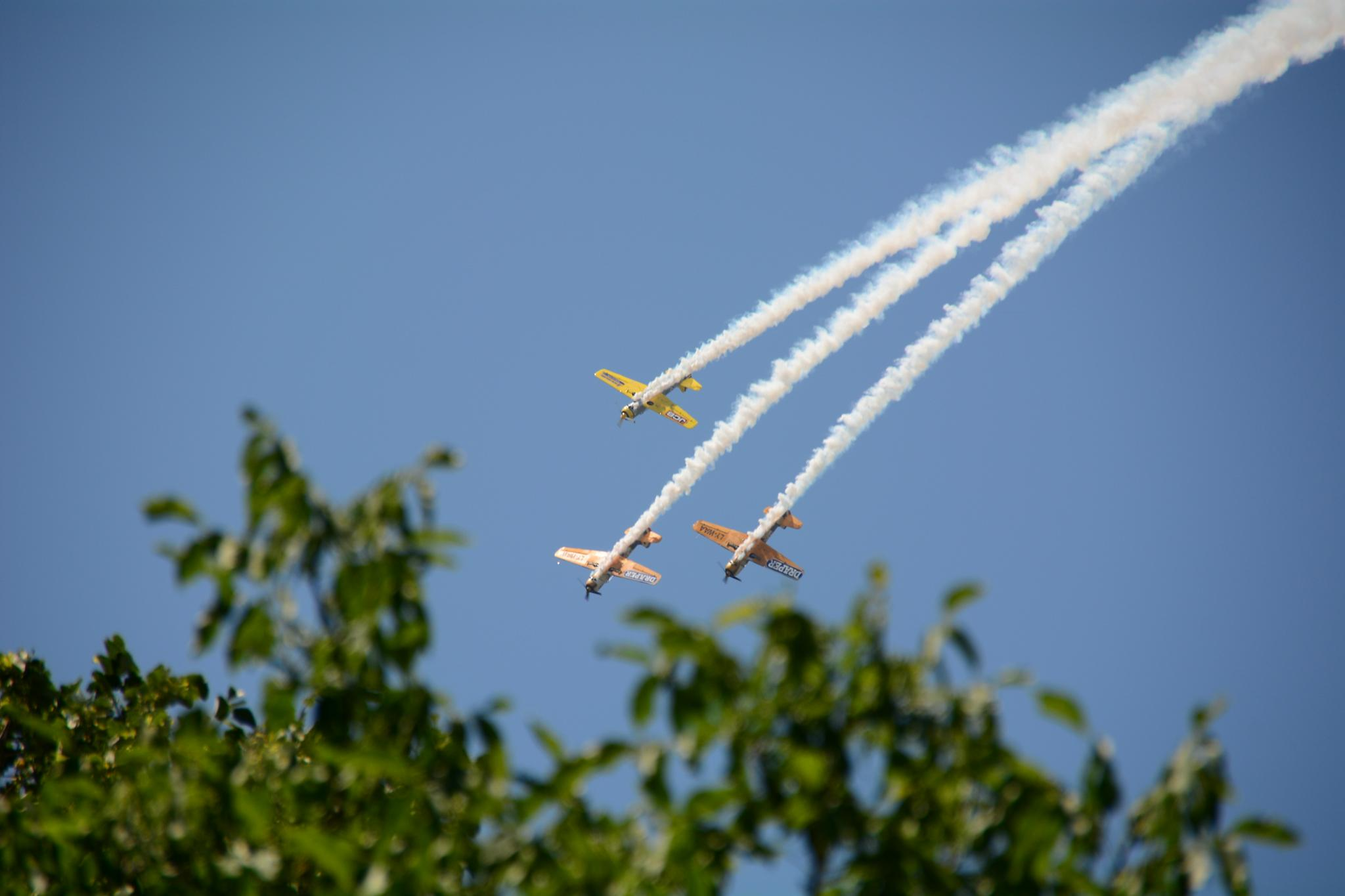 Three airplanes in formation by Silviu Calistru