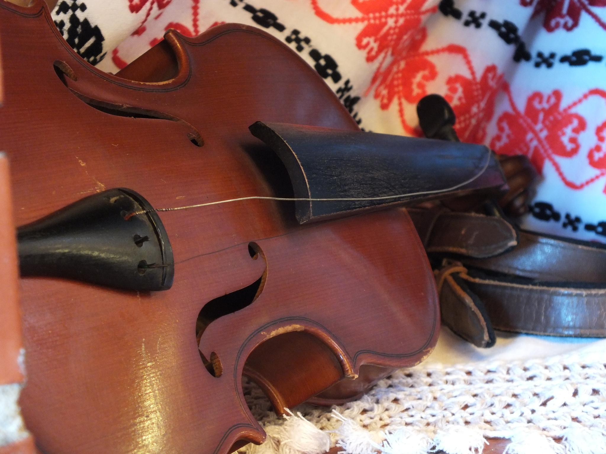Old violin by Silviu Calistru