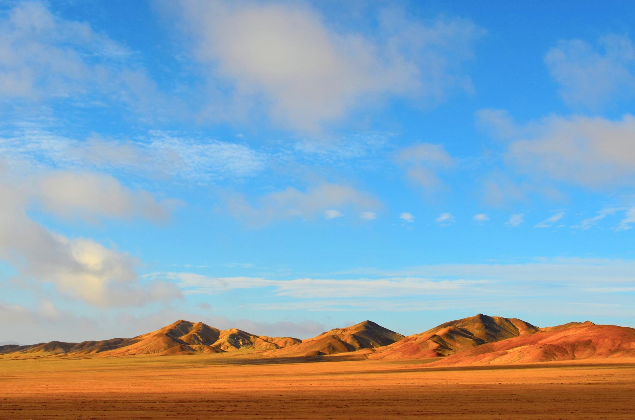 The Atacama Desert by Fernanda Medina Sáez