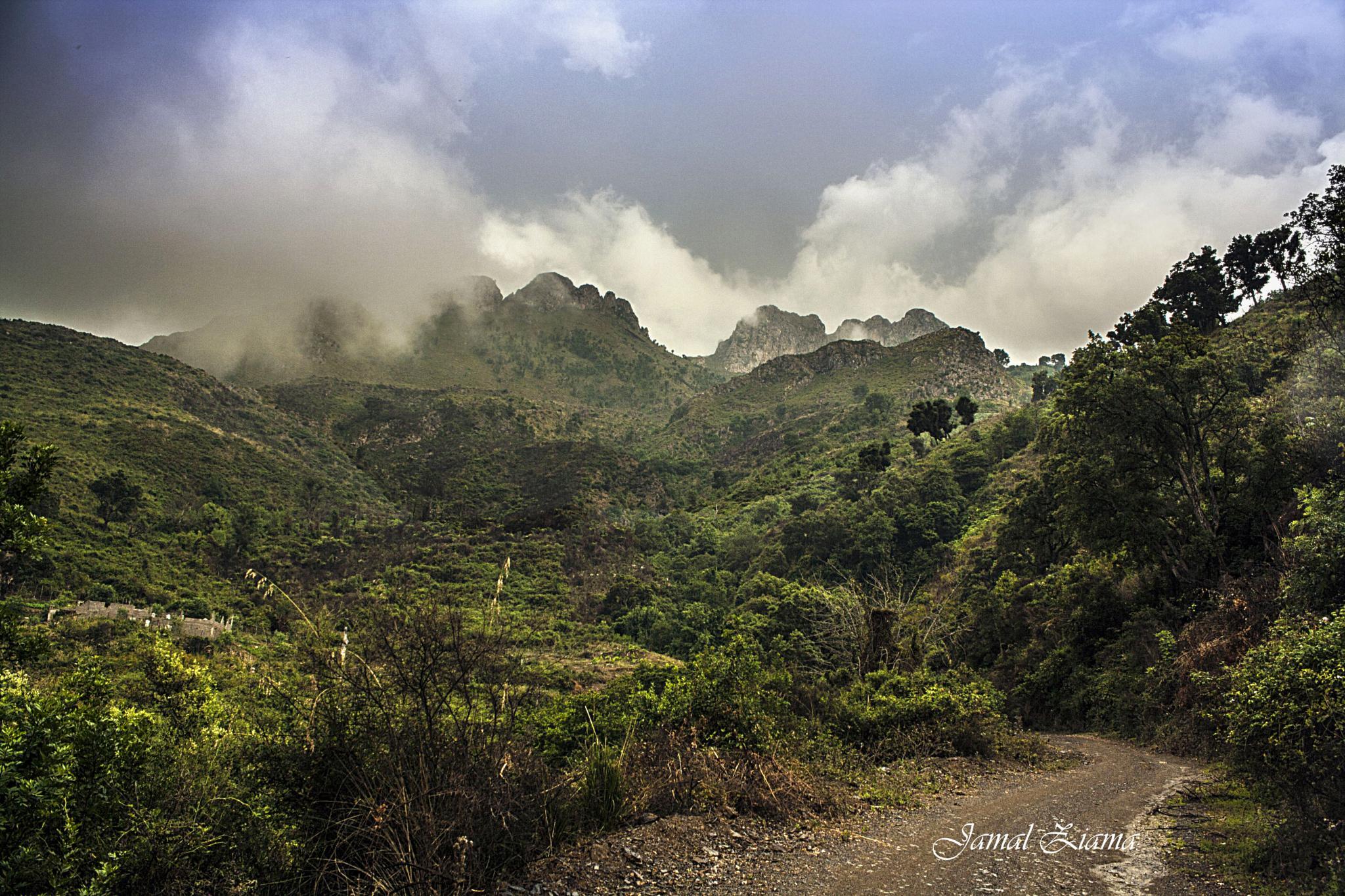 Mountain Road  by jamalziama