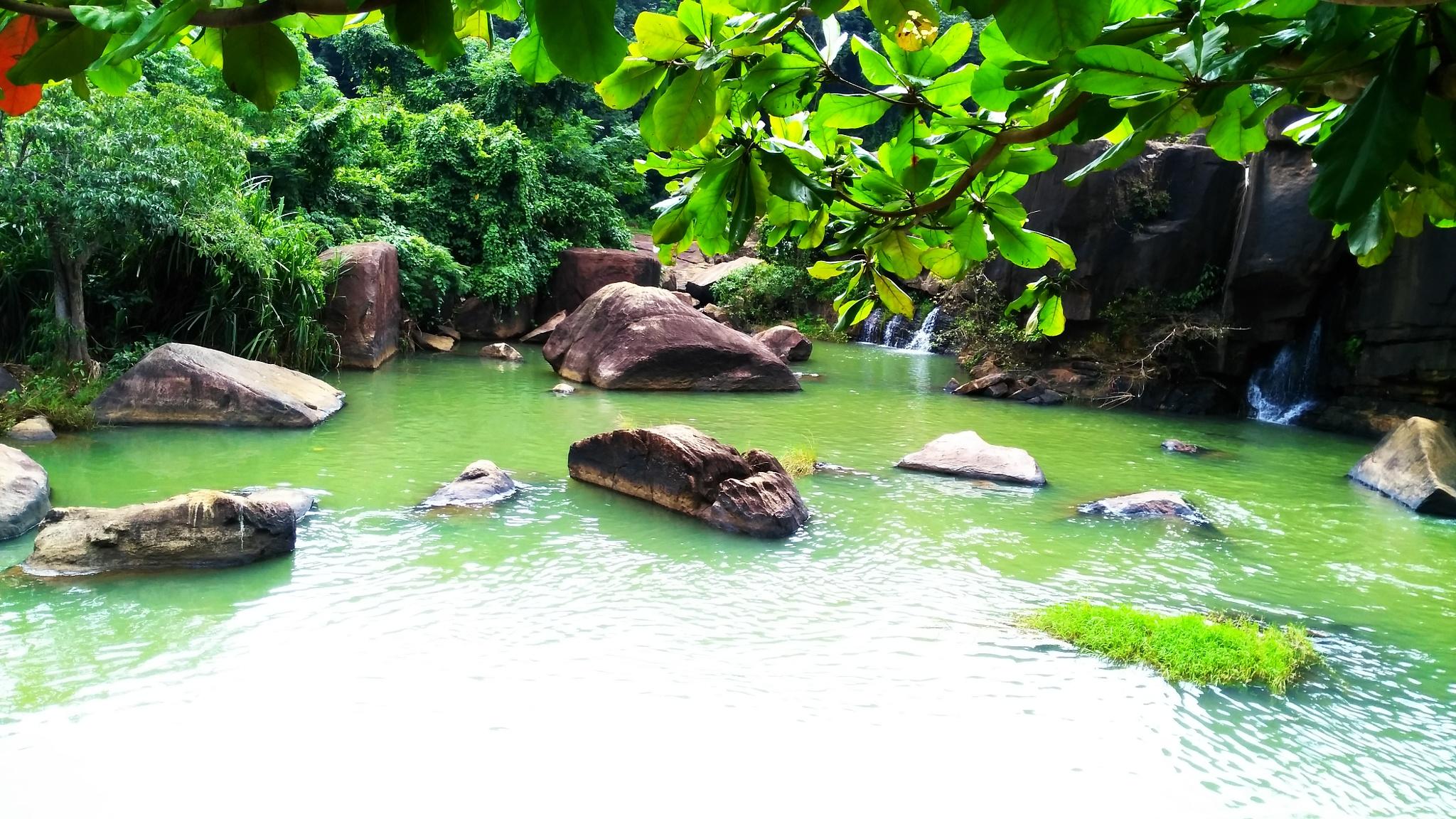 Forbidden Paradise by Ashwin