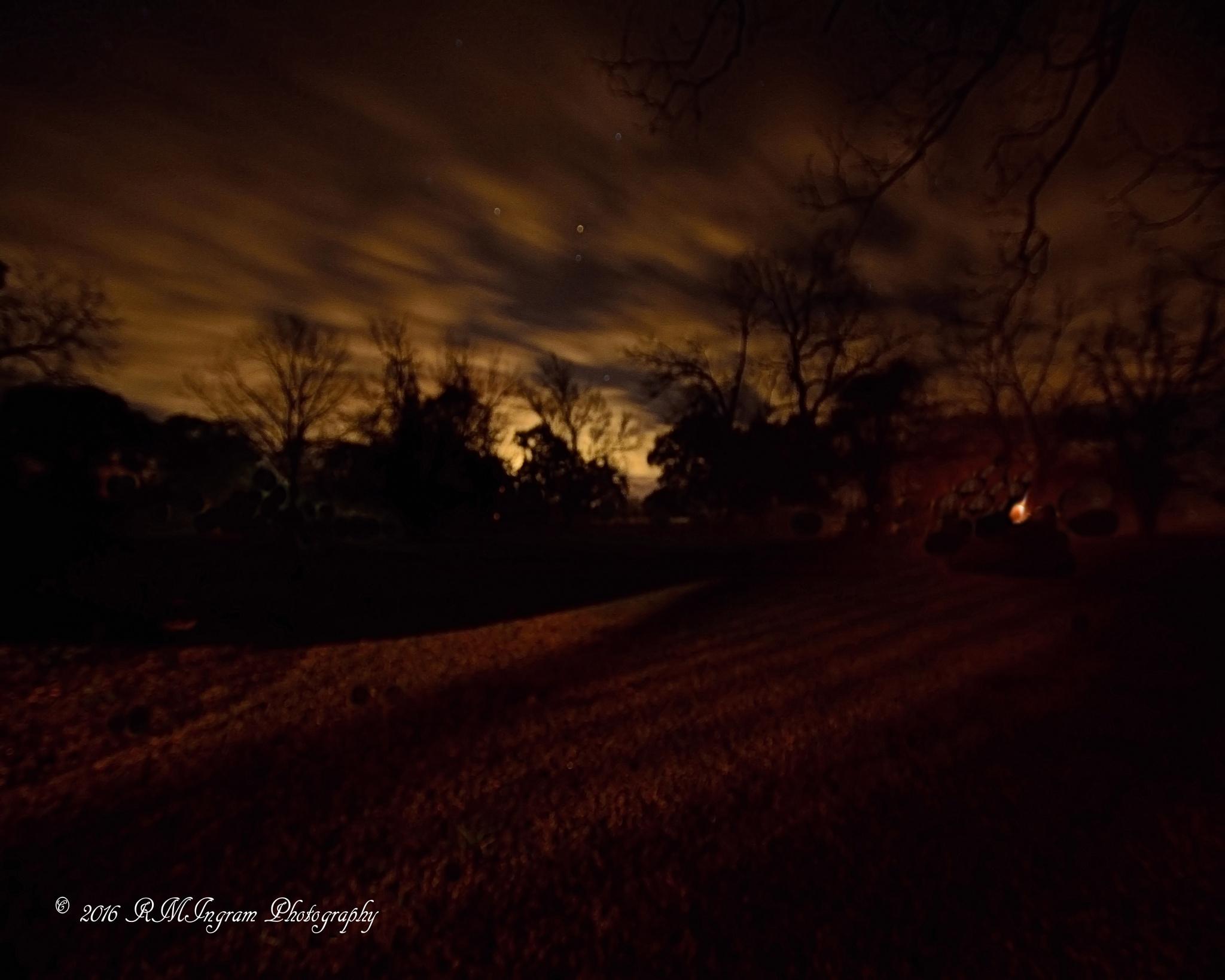 The Legend Of Bailey's Prairie by Richard Ingram