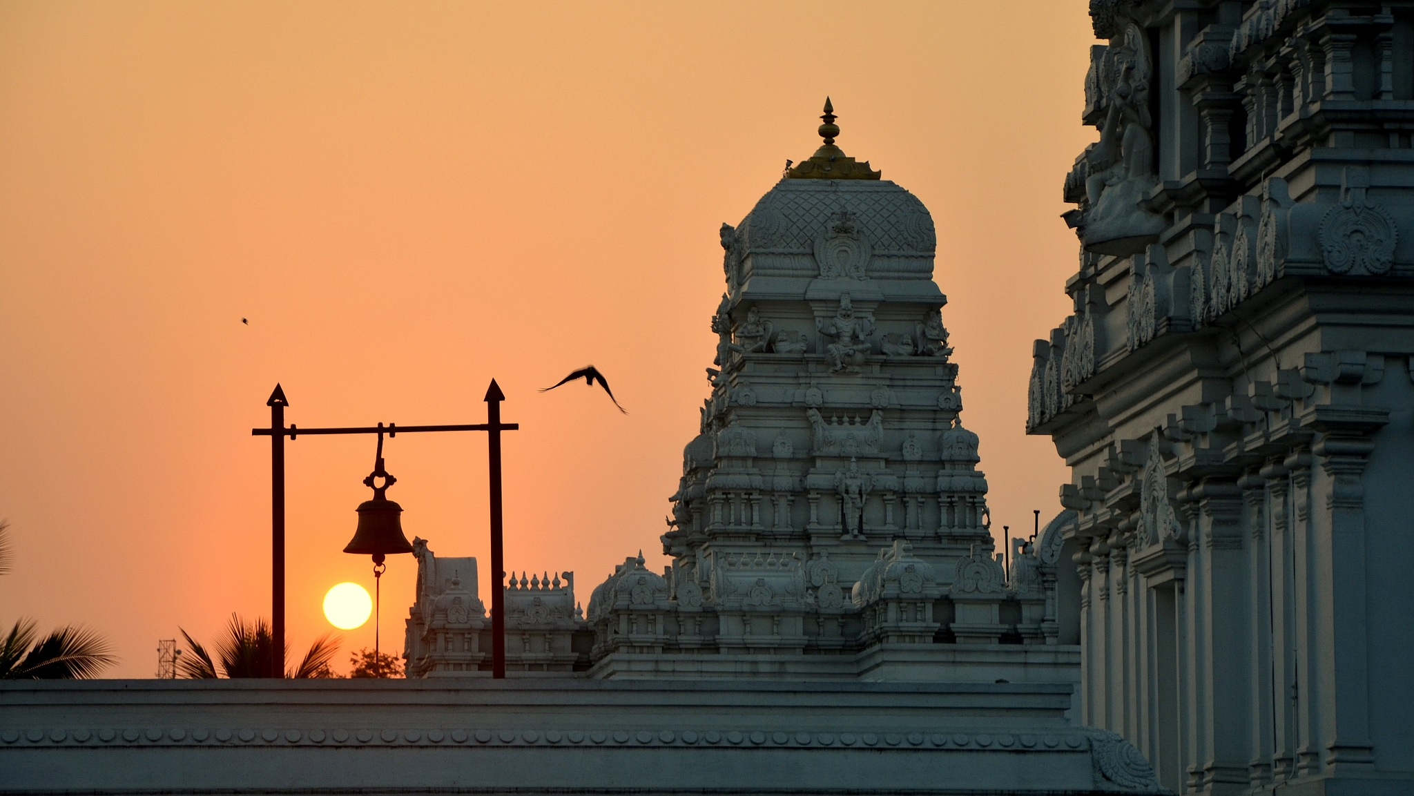 Evening Glance by Manabendra Bhattacharjee