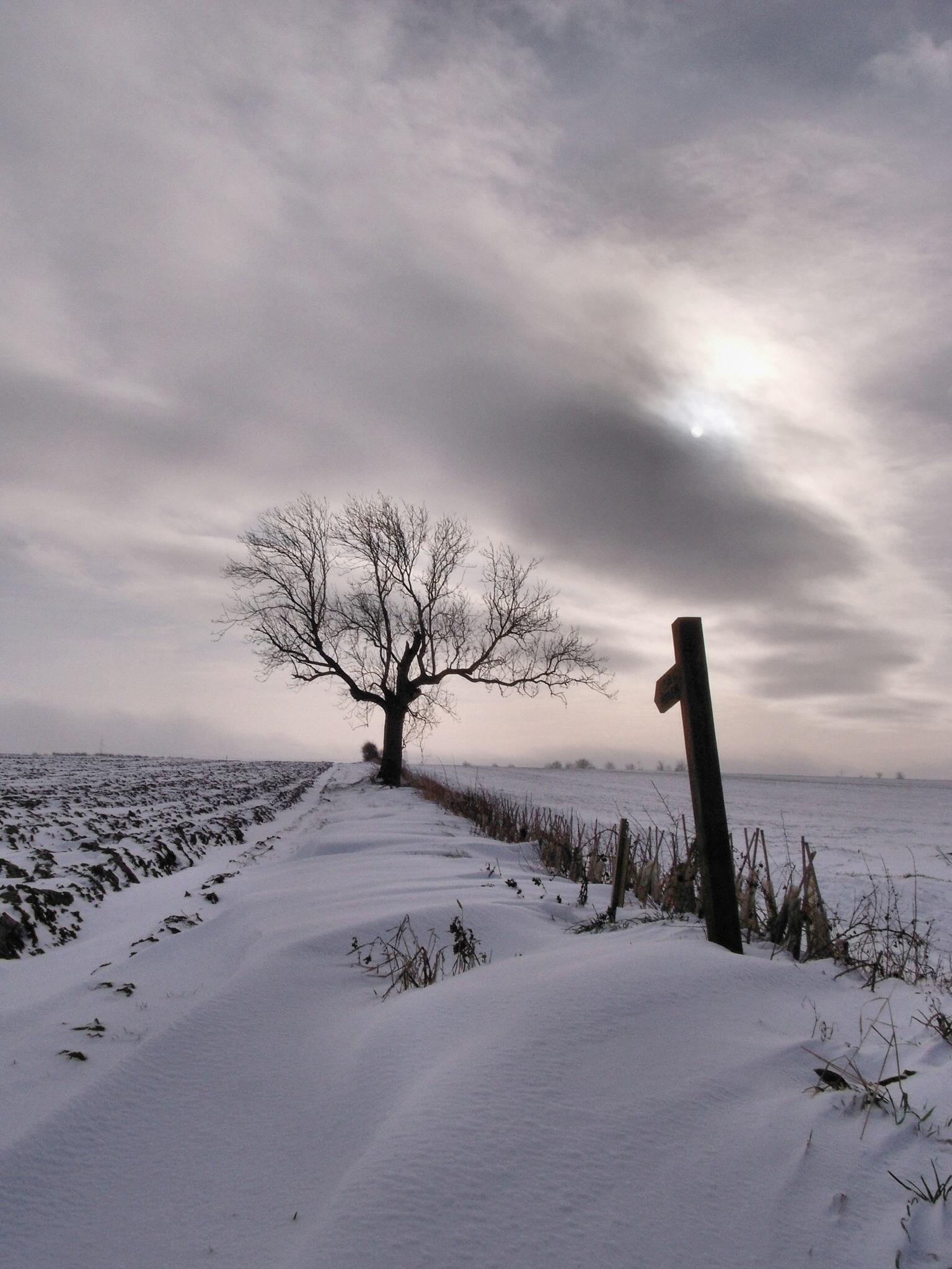 A Winters Tale by slcouzens