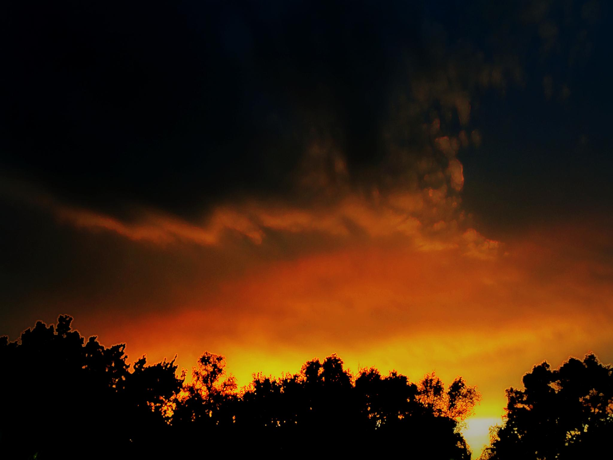 Hot Summer Nights by Lione'sLens