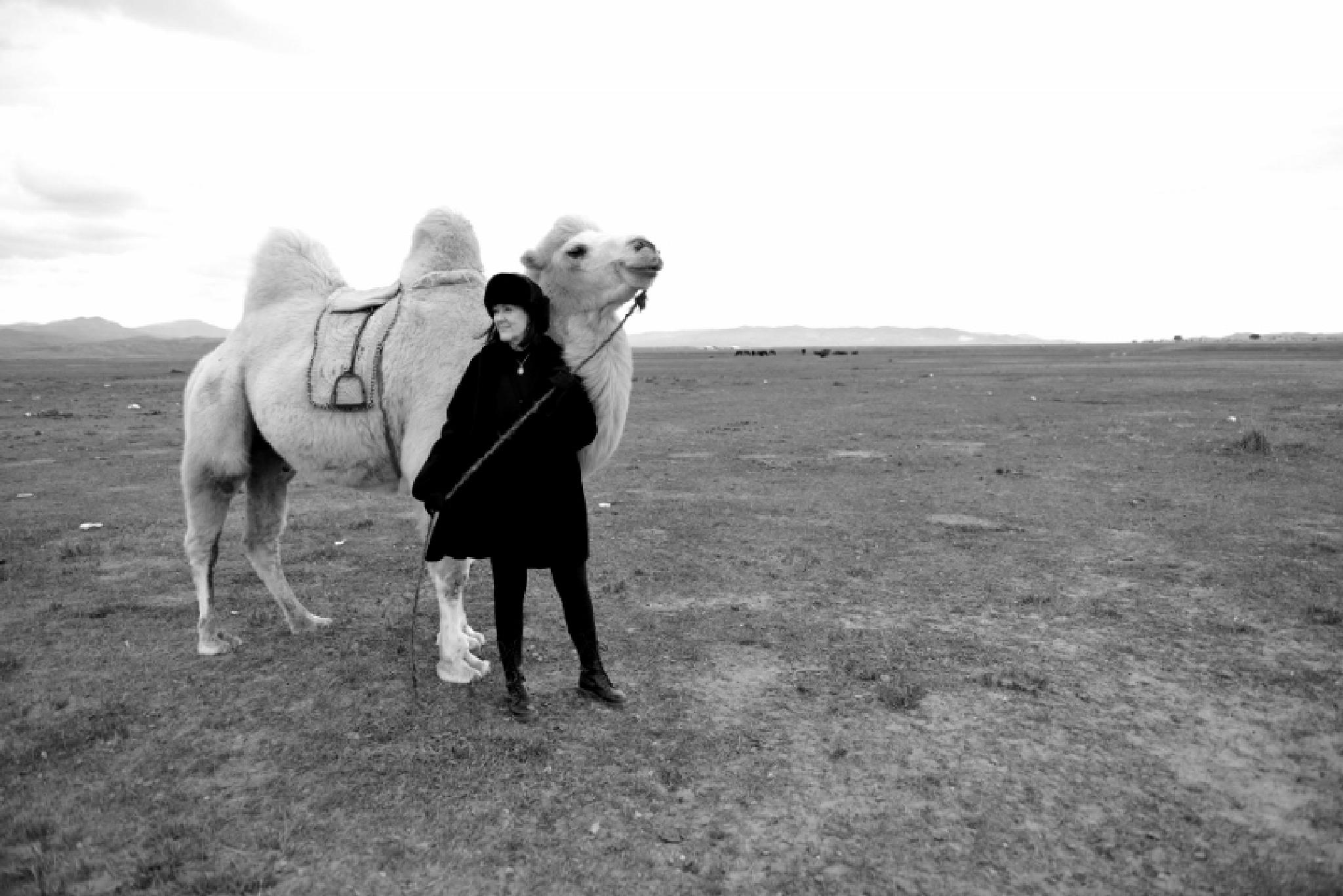 Channeling the Mongol Queens by Connie M Van Cleve