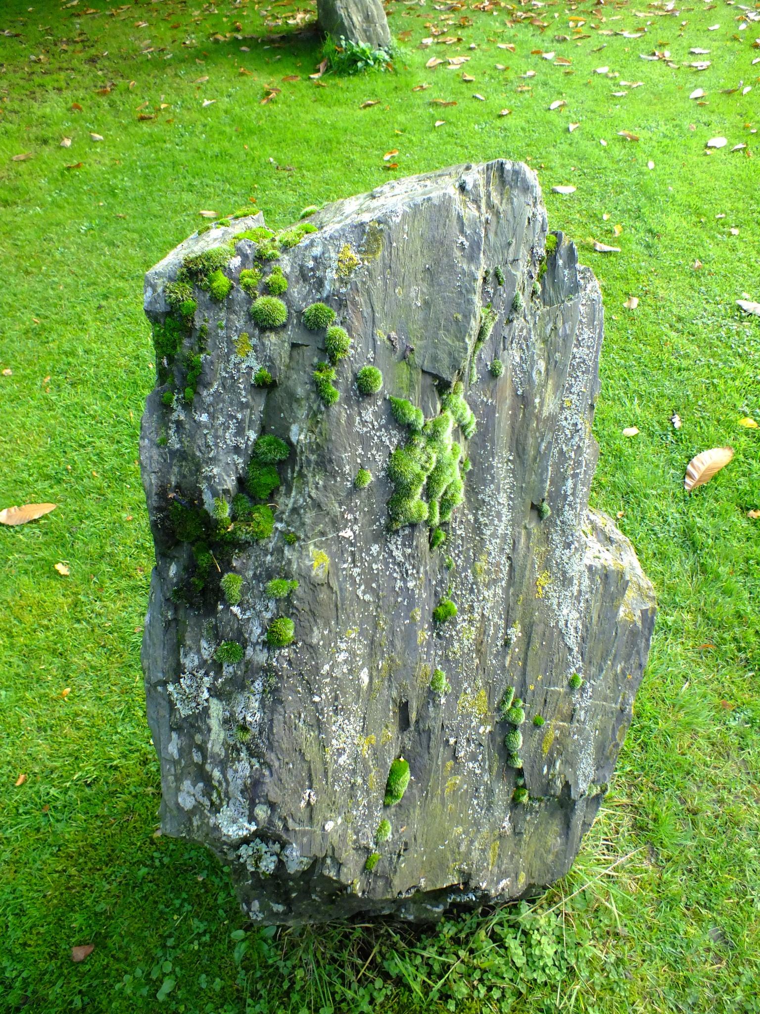 Mangreen Stone by afrior