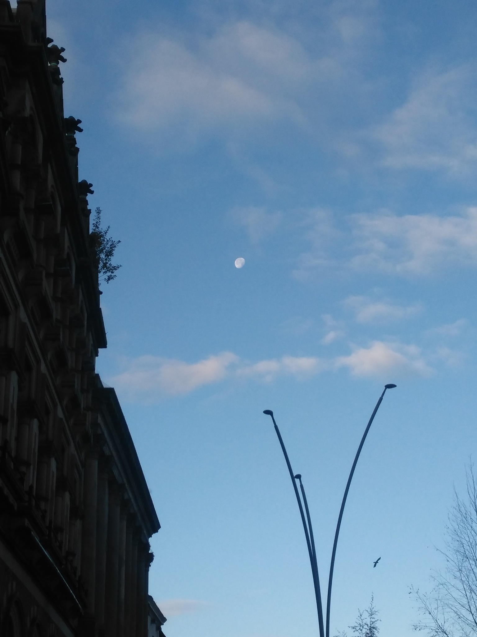 The Moon out in Daylight by afrior