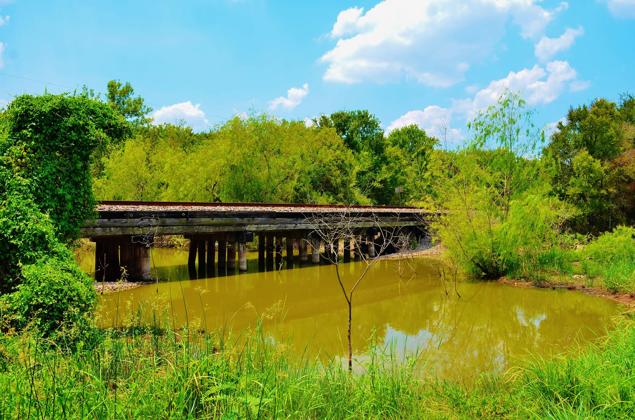 Crossing The Creek I  2862 by Jim Suter