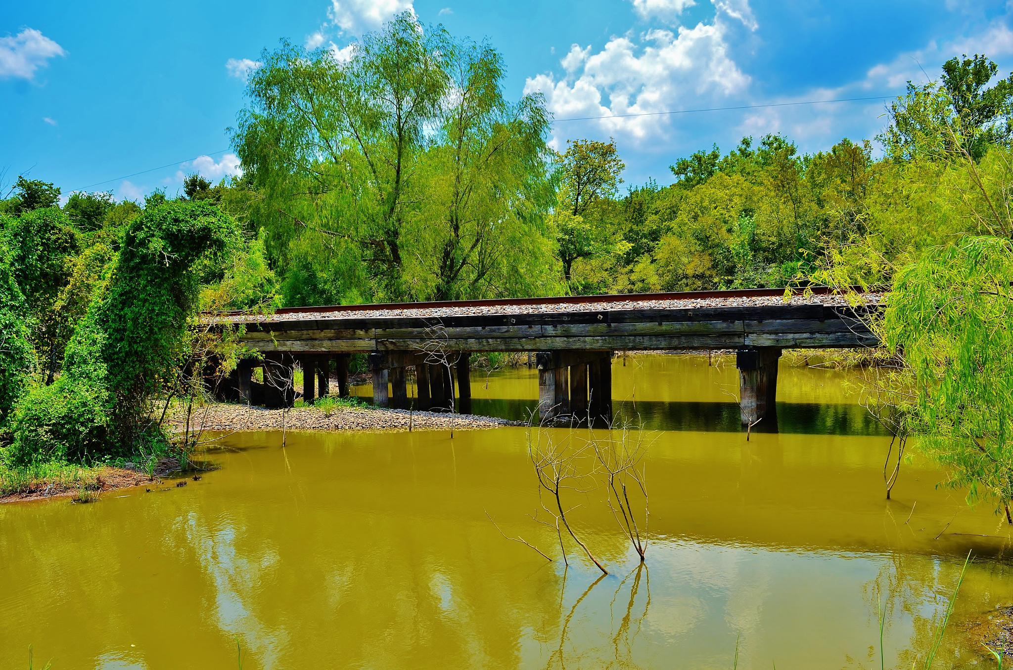 Crossing The Creek II  2866 by Jim Suter