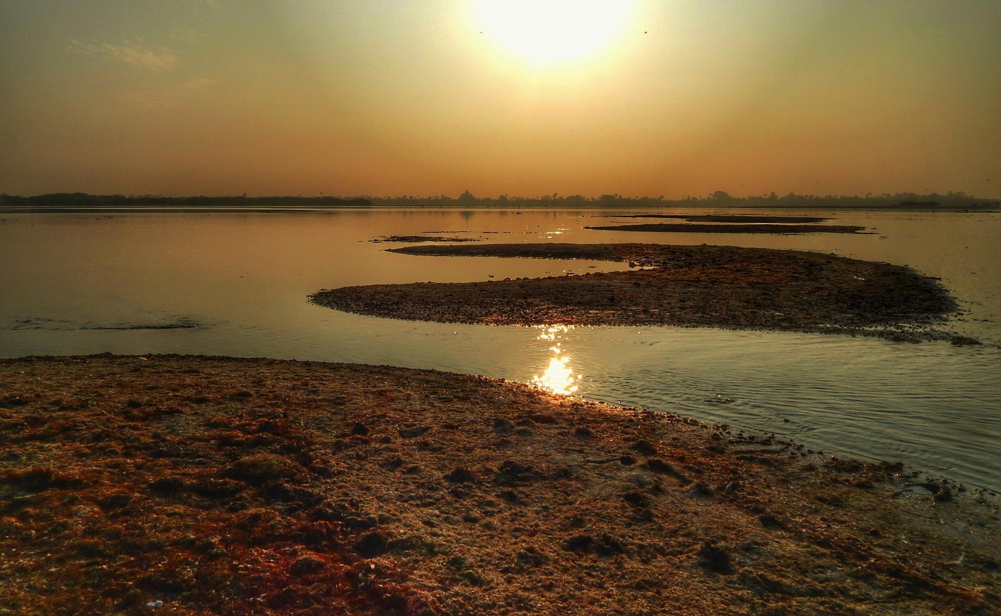 lake by Aritra ghosh