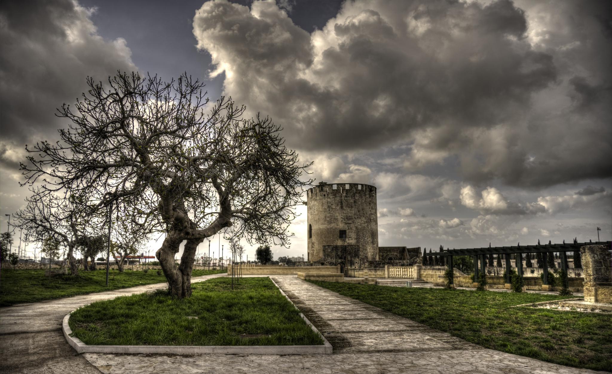 Tower & Tree   by NicoSebaste