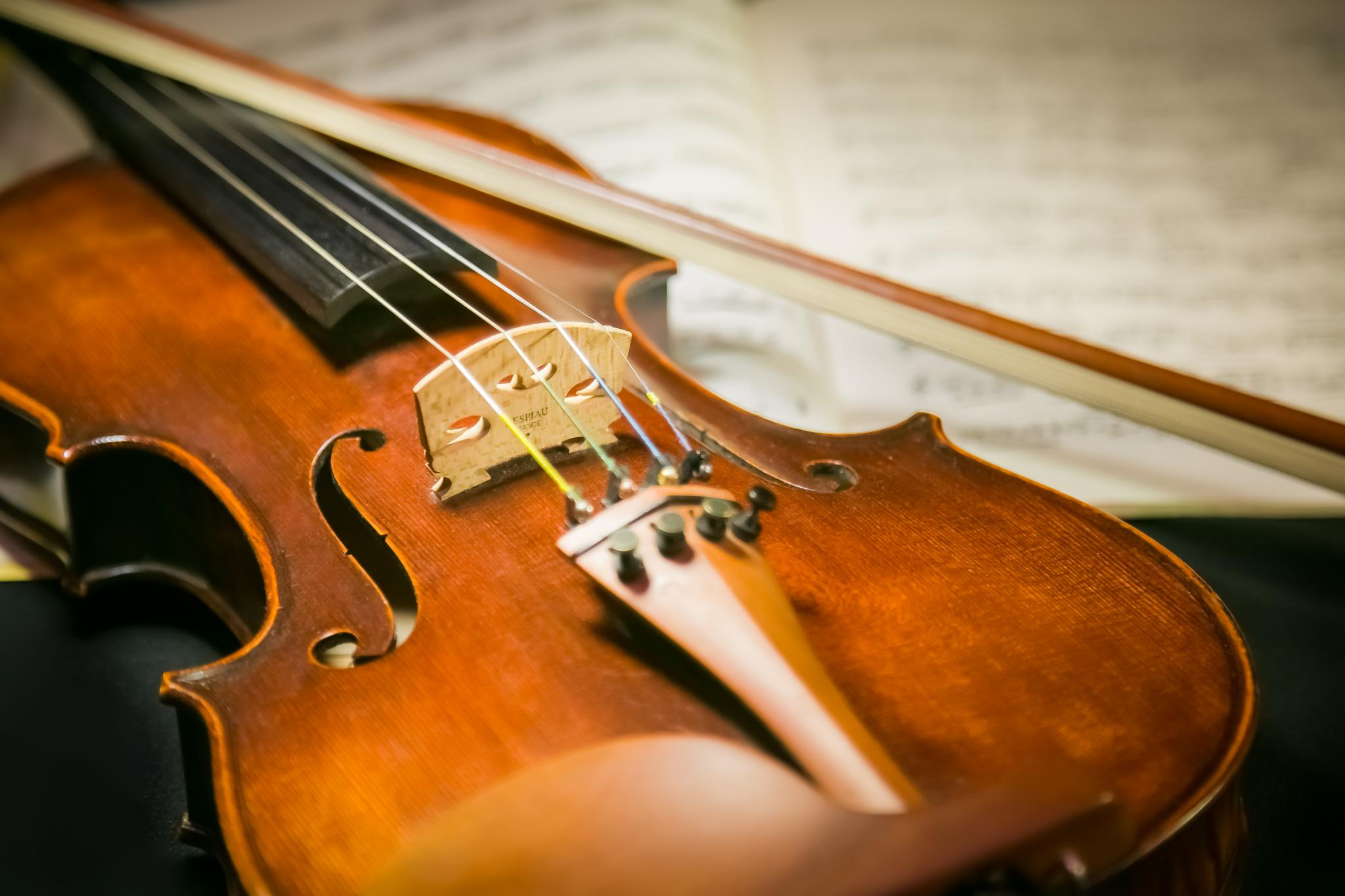 Violin by Cary Chu
