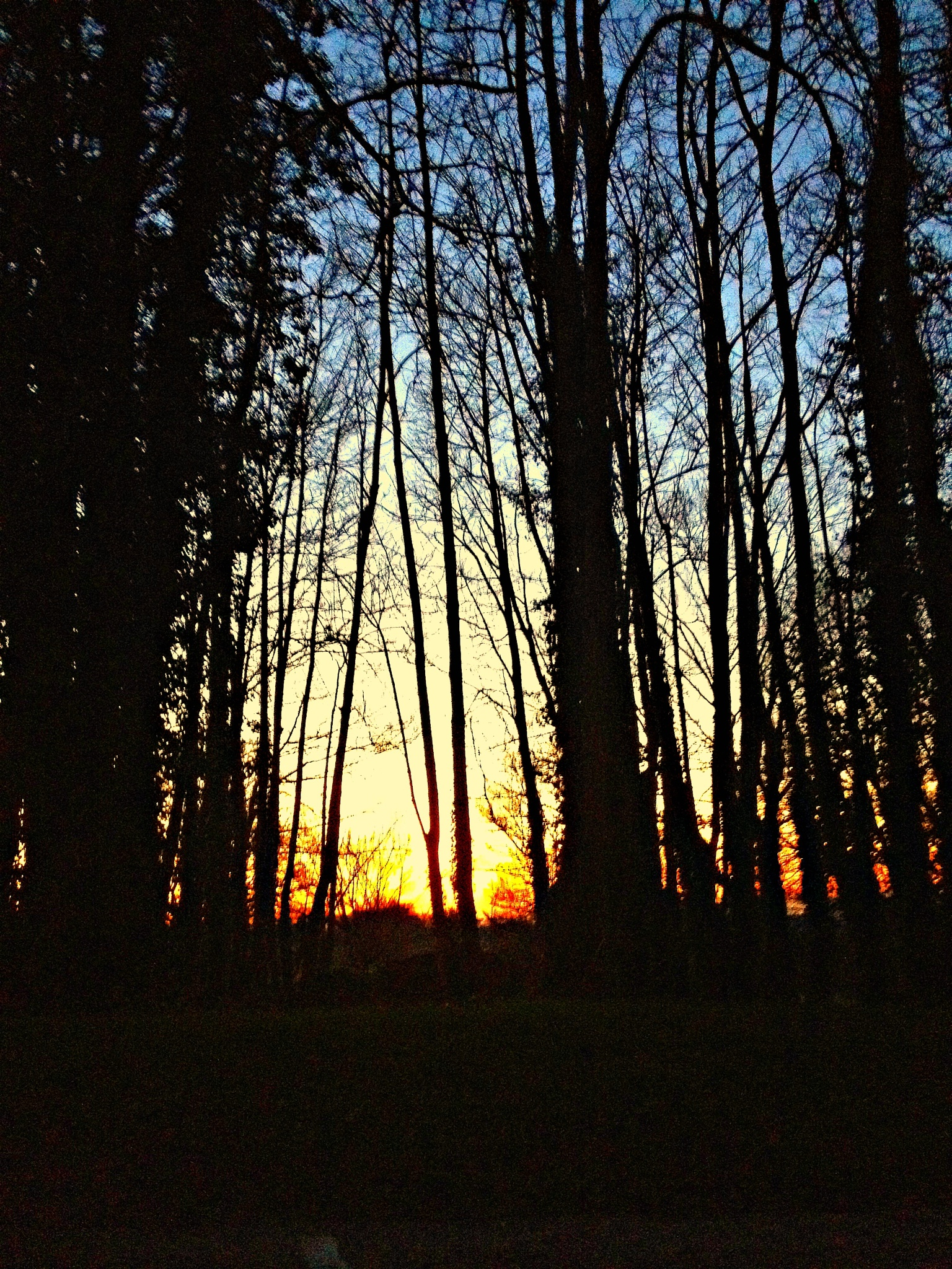 The evening Sun holds it's breath a little longer each day! by Samantha Howatson