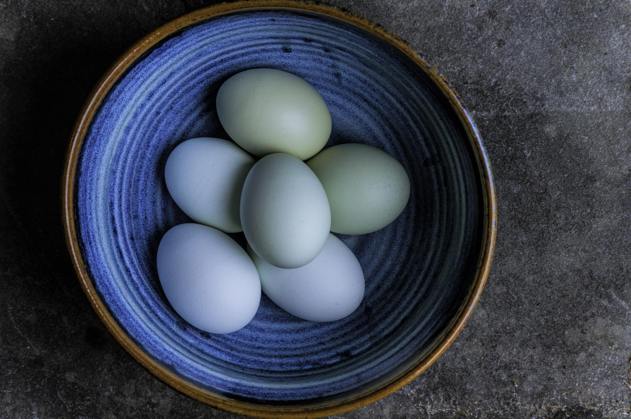 Blue Eggs in a Blue Bowl by StoneyStone