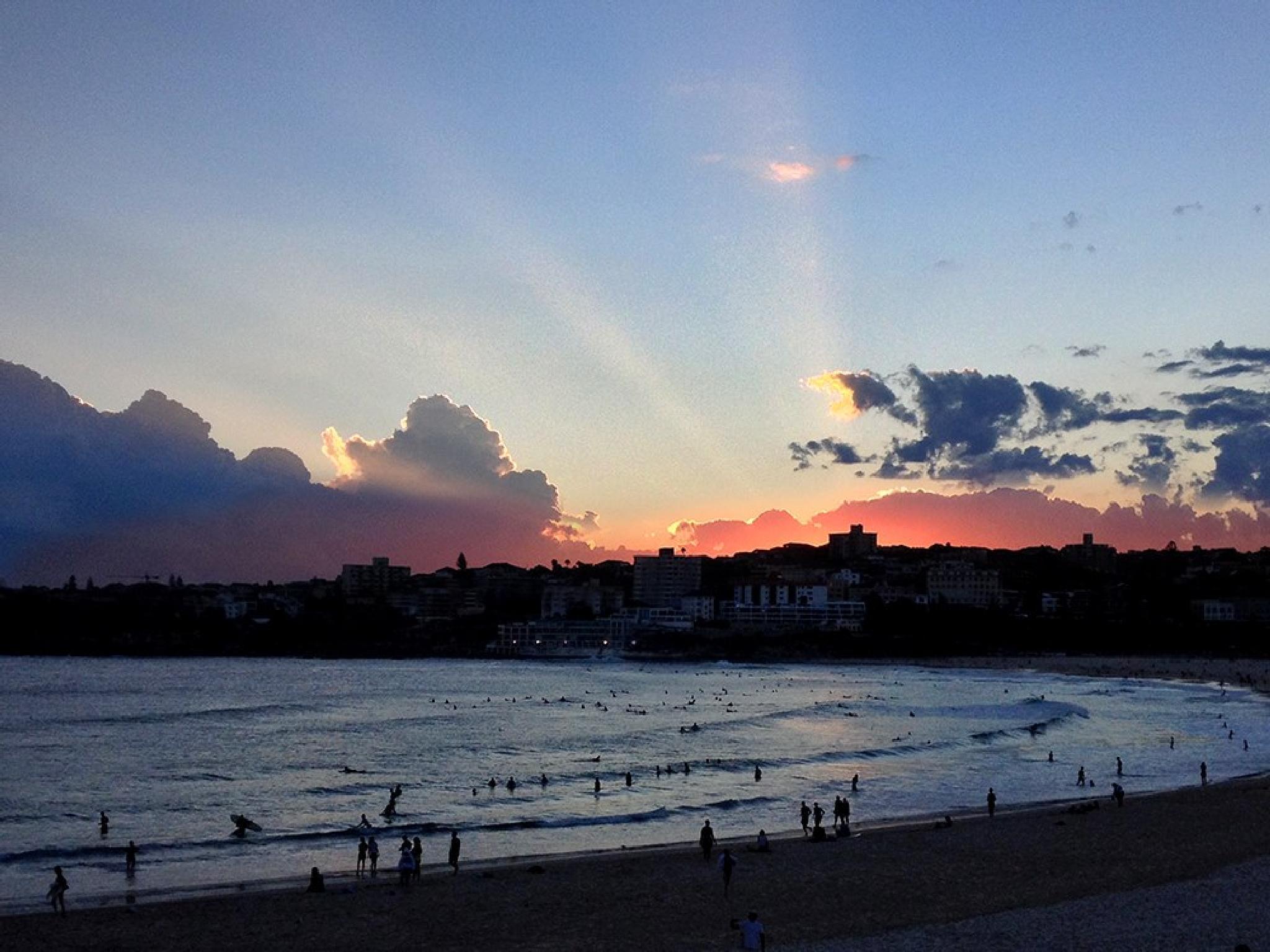 Bondi Sunset by Richie Henson