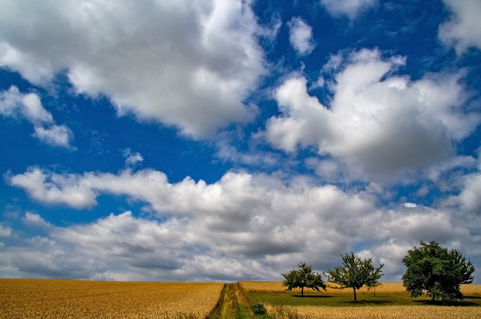 Photo in Landscape #nature #landscape #sky #clouds #fields