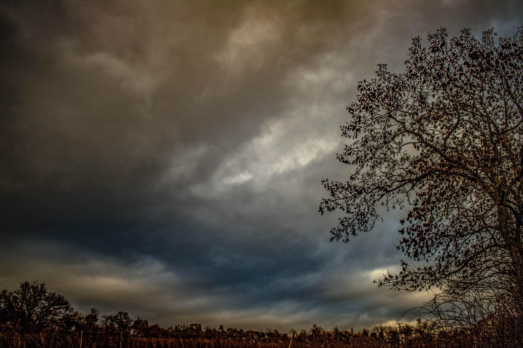 Photo in Random #nature #sky #clouds #crativ