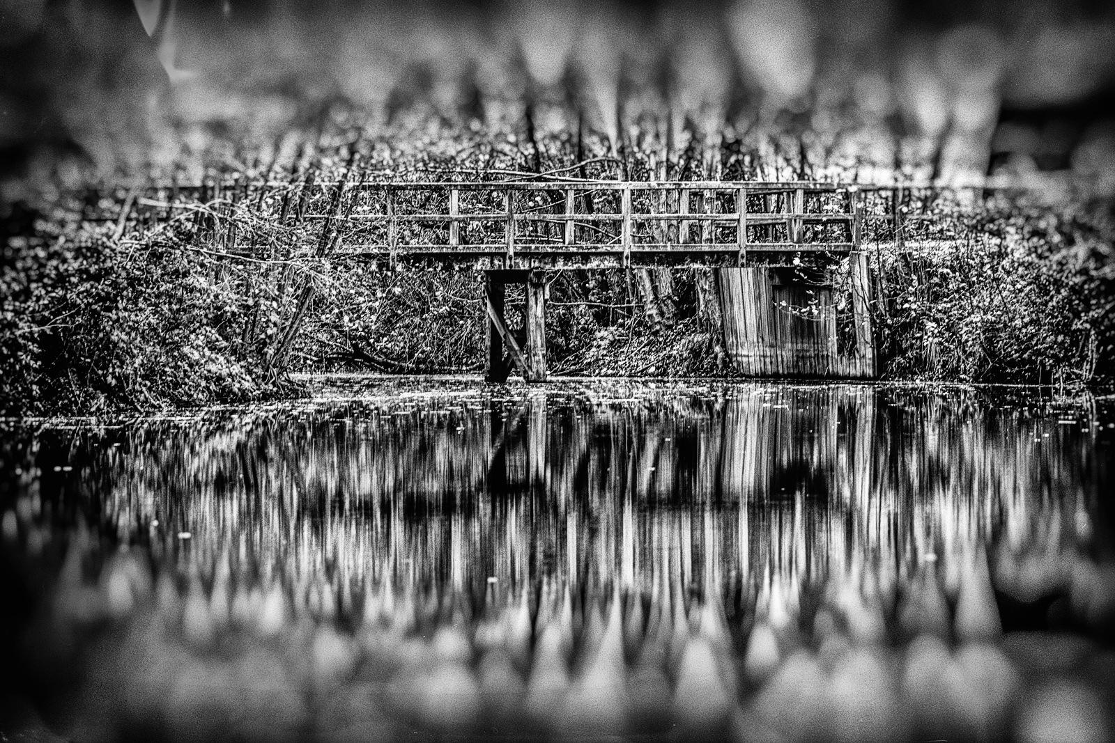 Bridge by karlvock