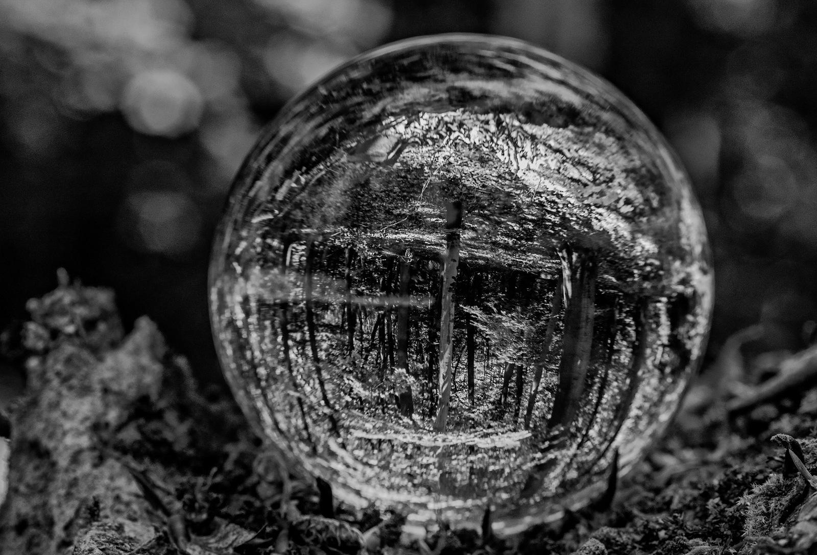 World in a bowl by karlvock