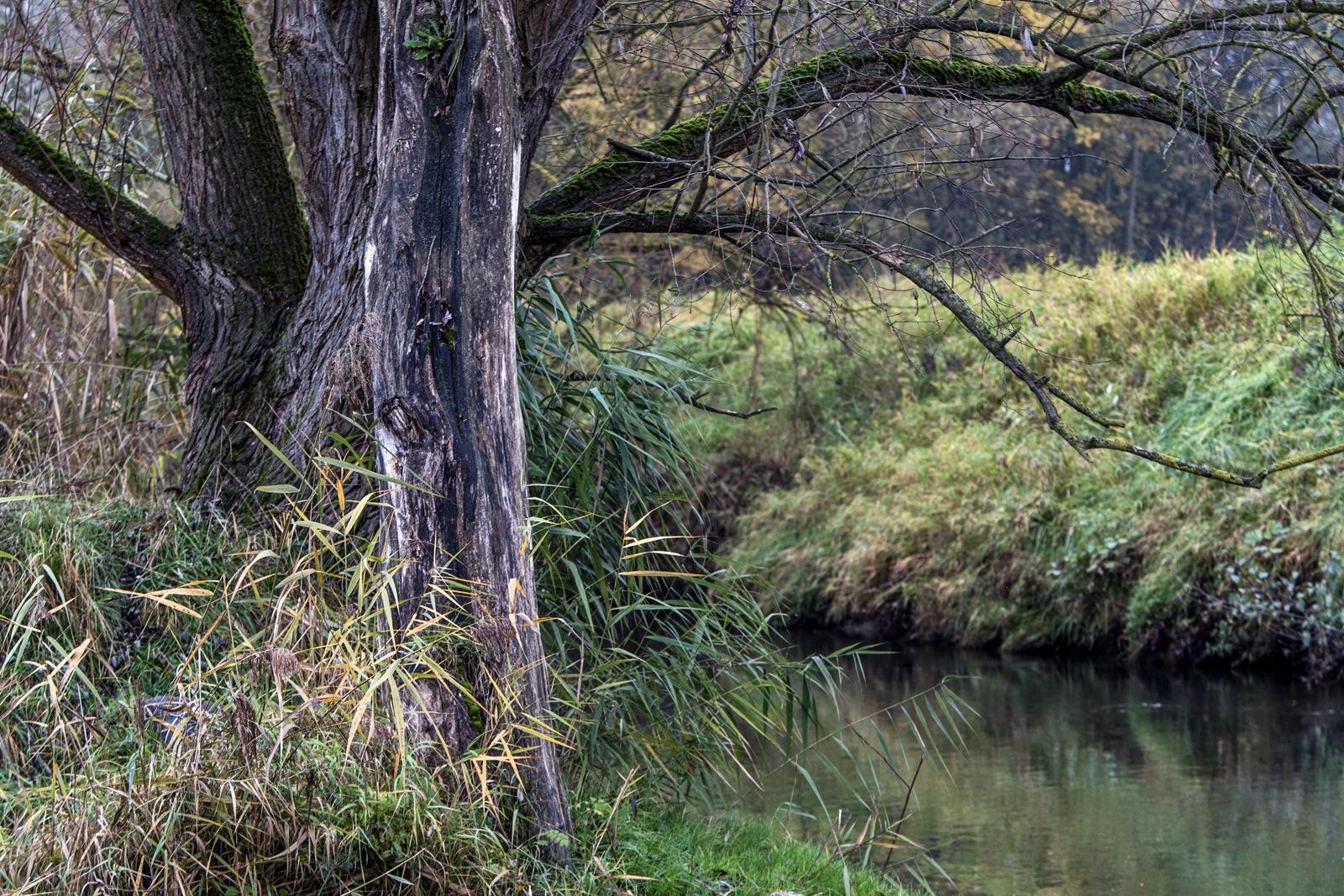 Riverside by karlvock
