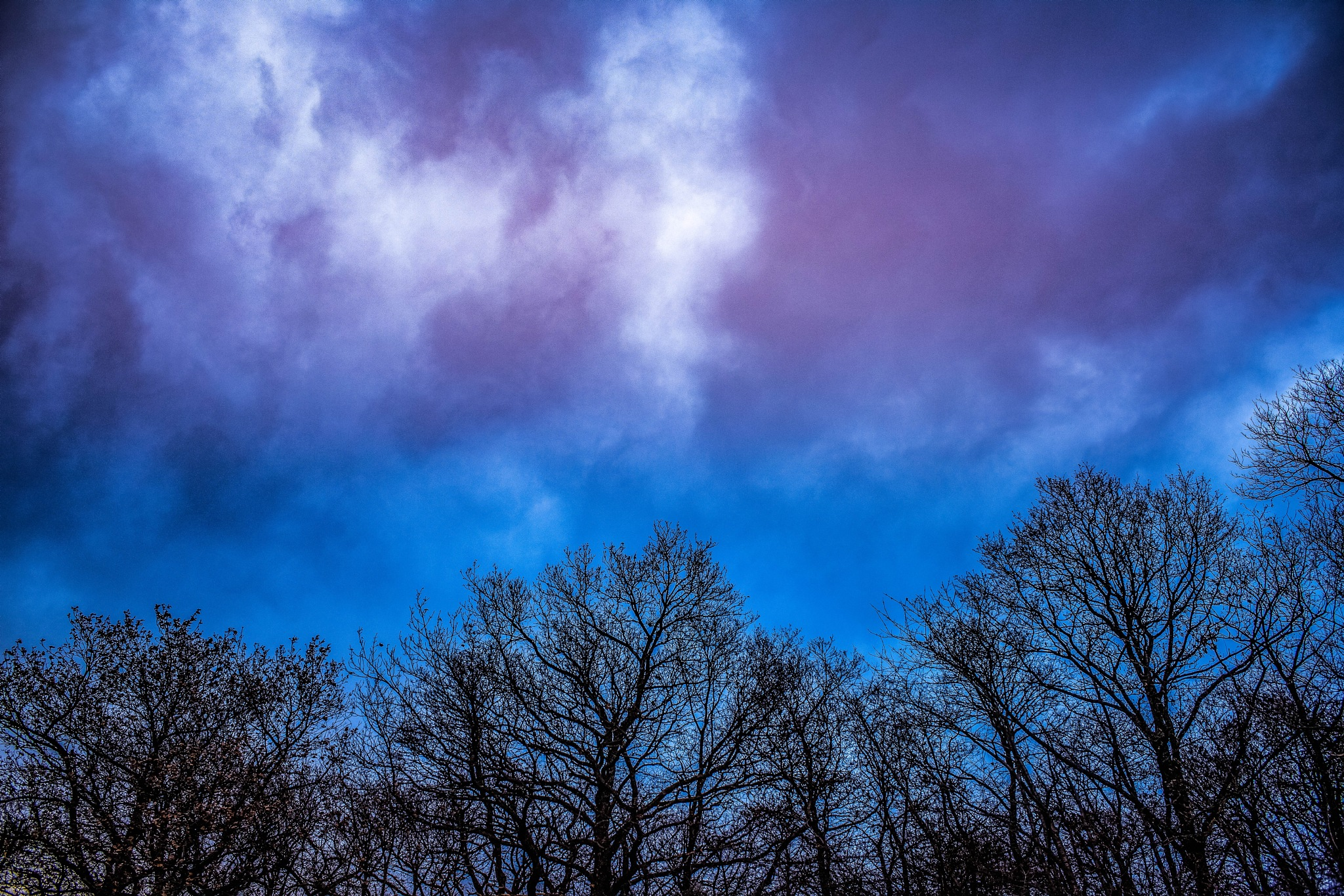 Over the trees by karlvock