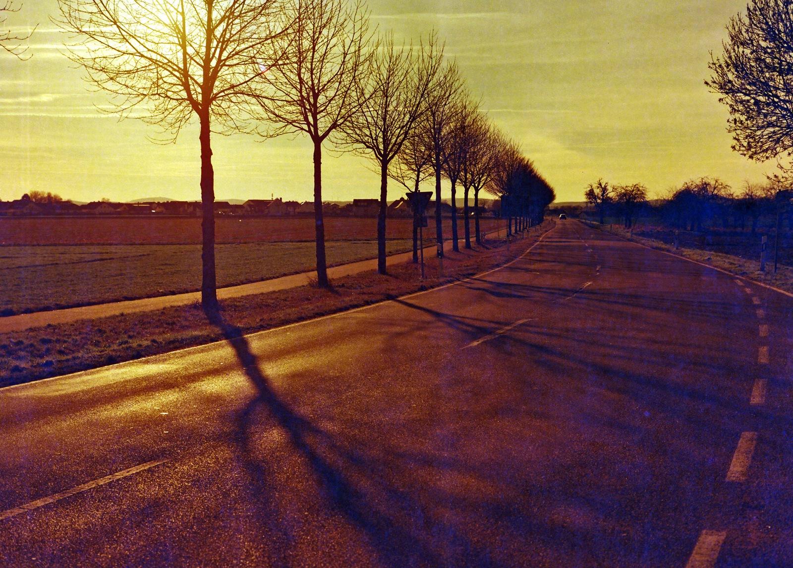 Long shadows by karlvock