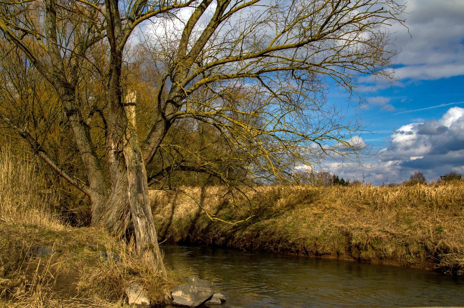 Stream by karlvock