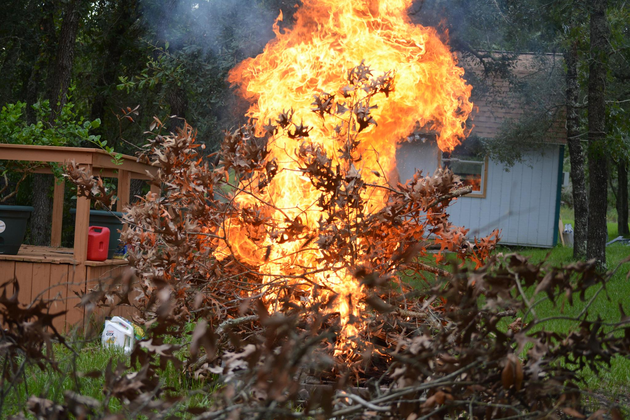 fire in backyard--burning limbs and branches by rayzicakes