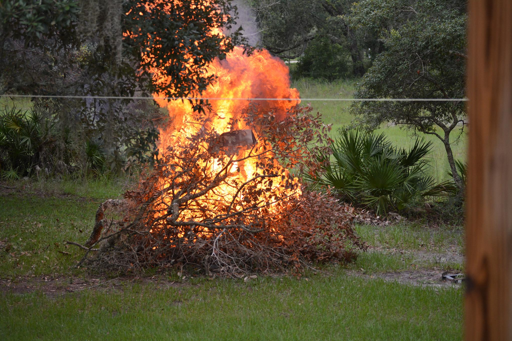Photo in Random #fire #burning #ablaze #twigs #branches