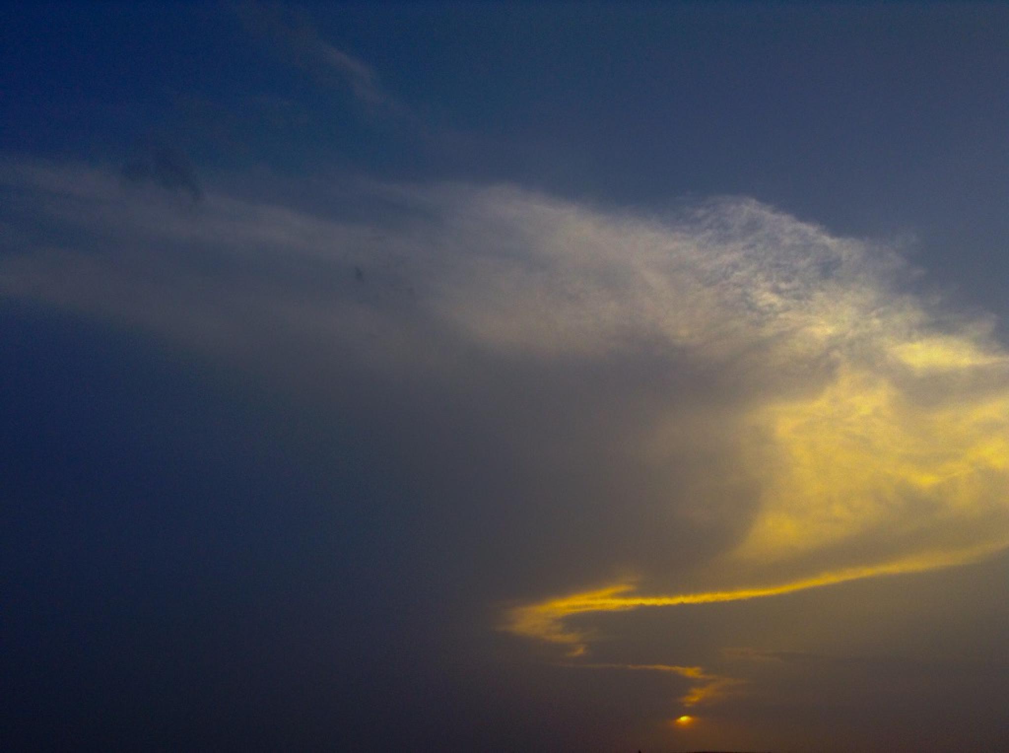 Yellow and blue by Anjana Chakraborti