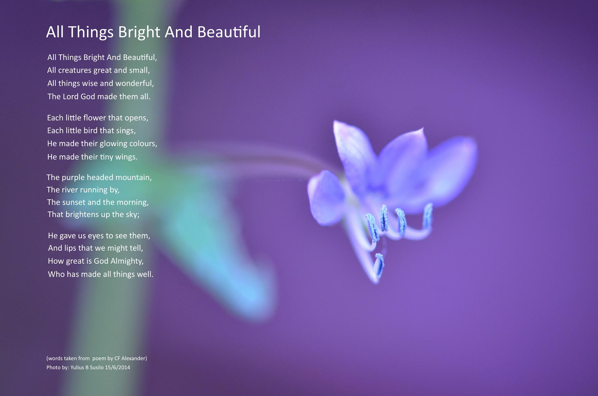 All Things Bright And Beautiful by Yulius B Susilo
