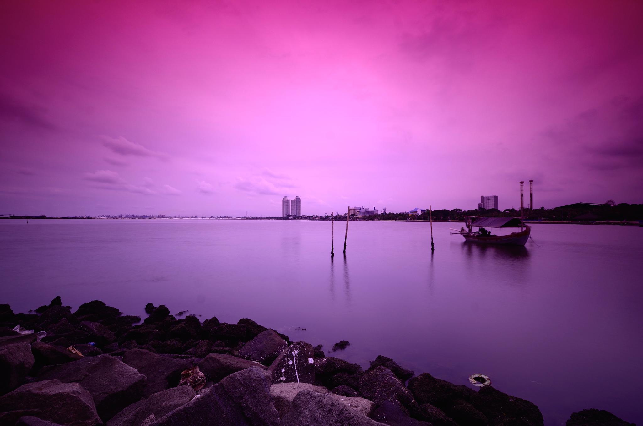 Pinkish Day by Yulius B Susilo