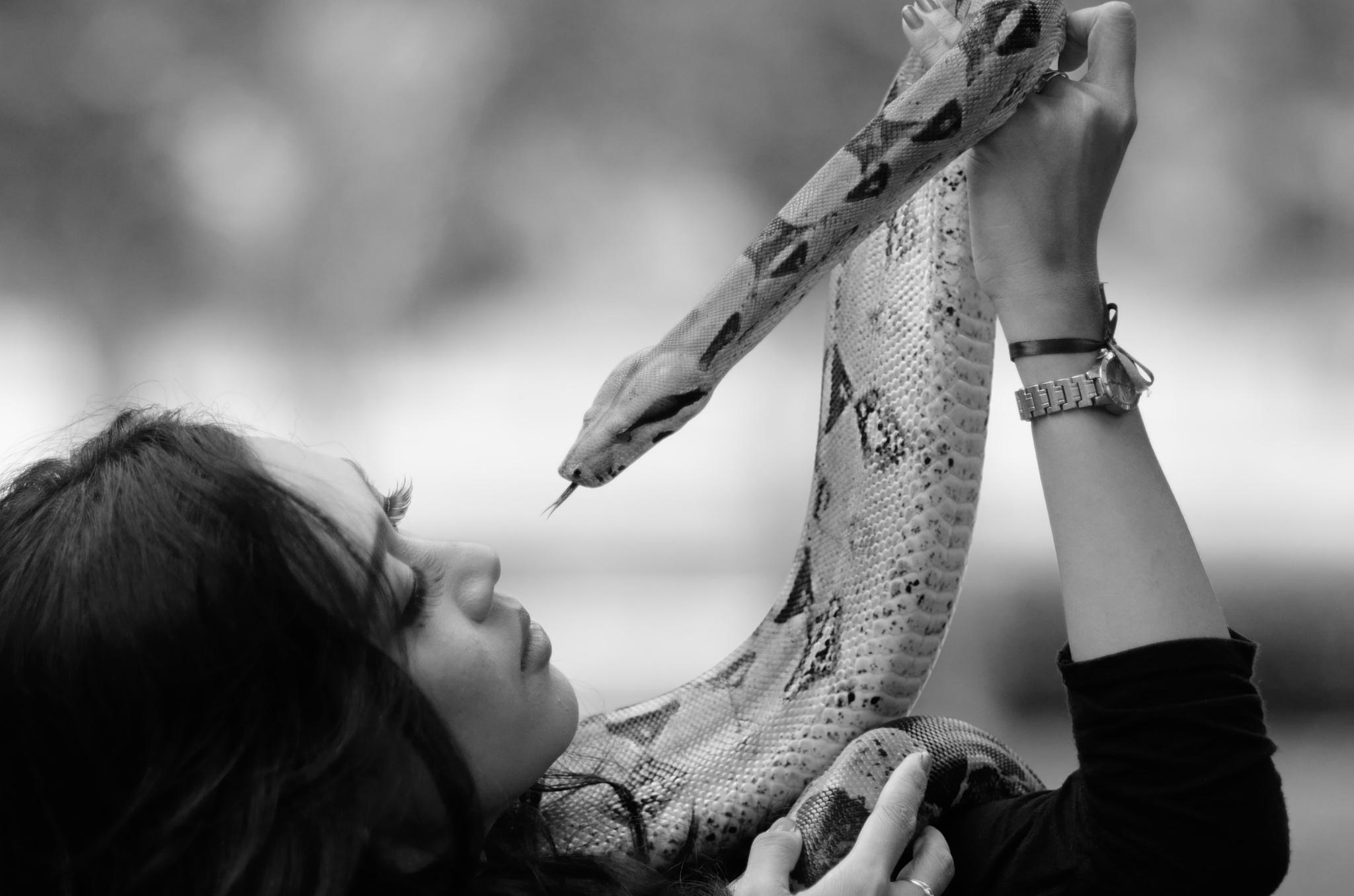 Snake Charmer by Yulius B Susilo