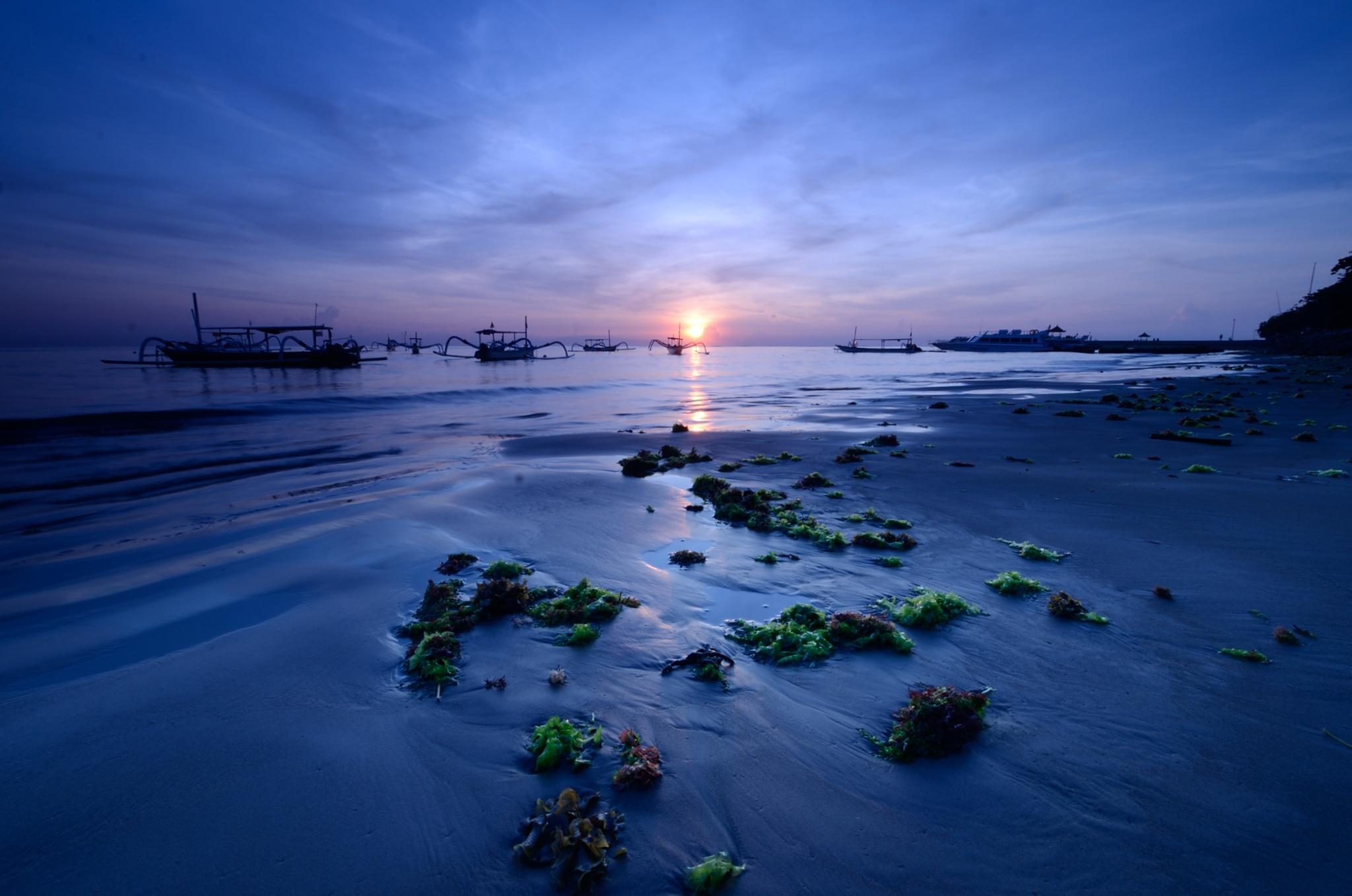 Mossy Beach by Yulius