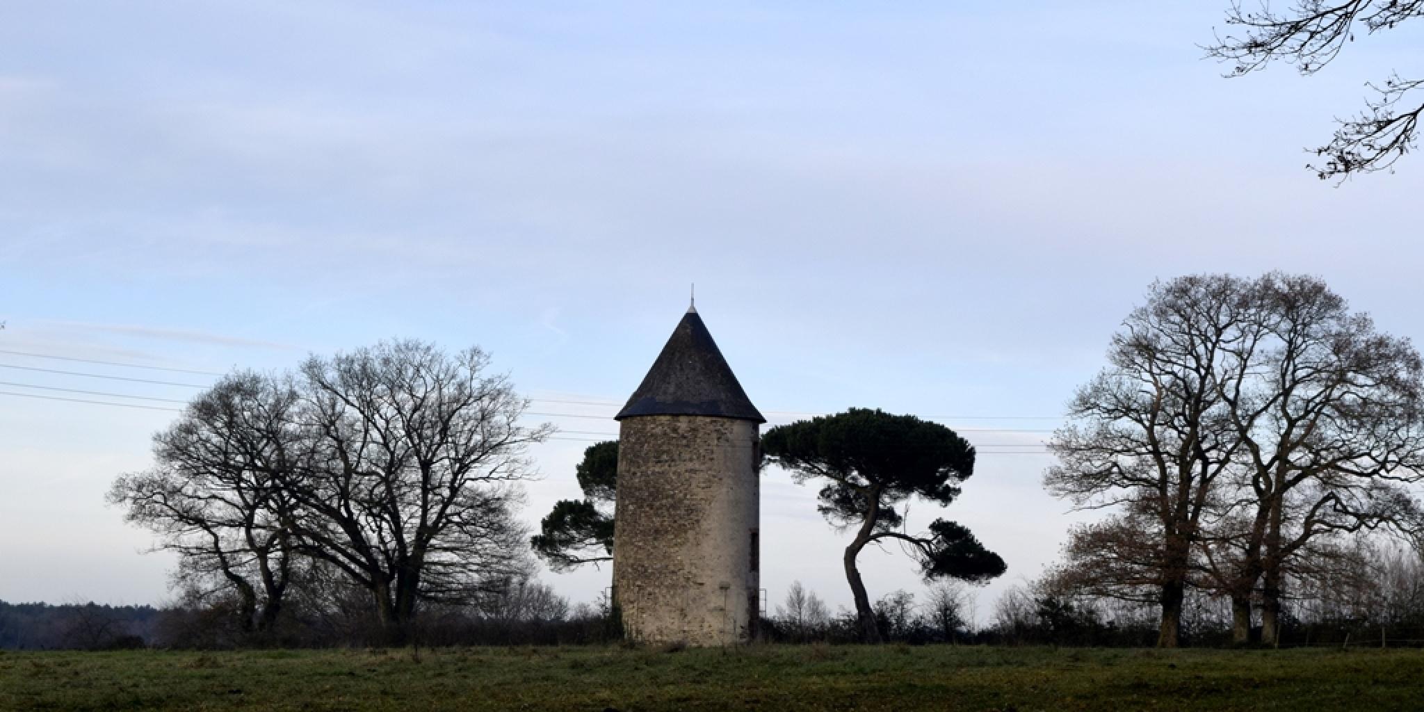 moulin by pawel2reklewski