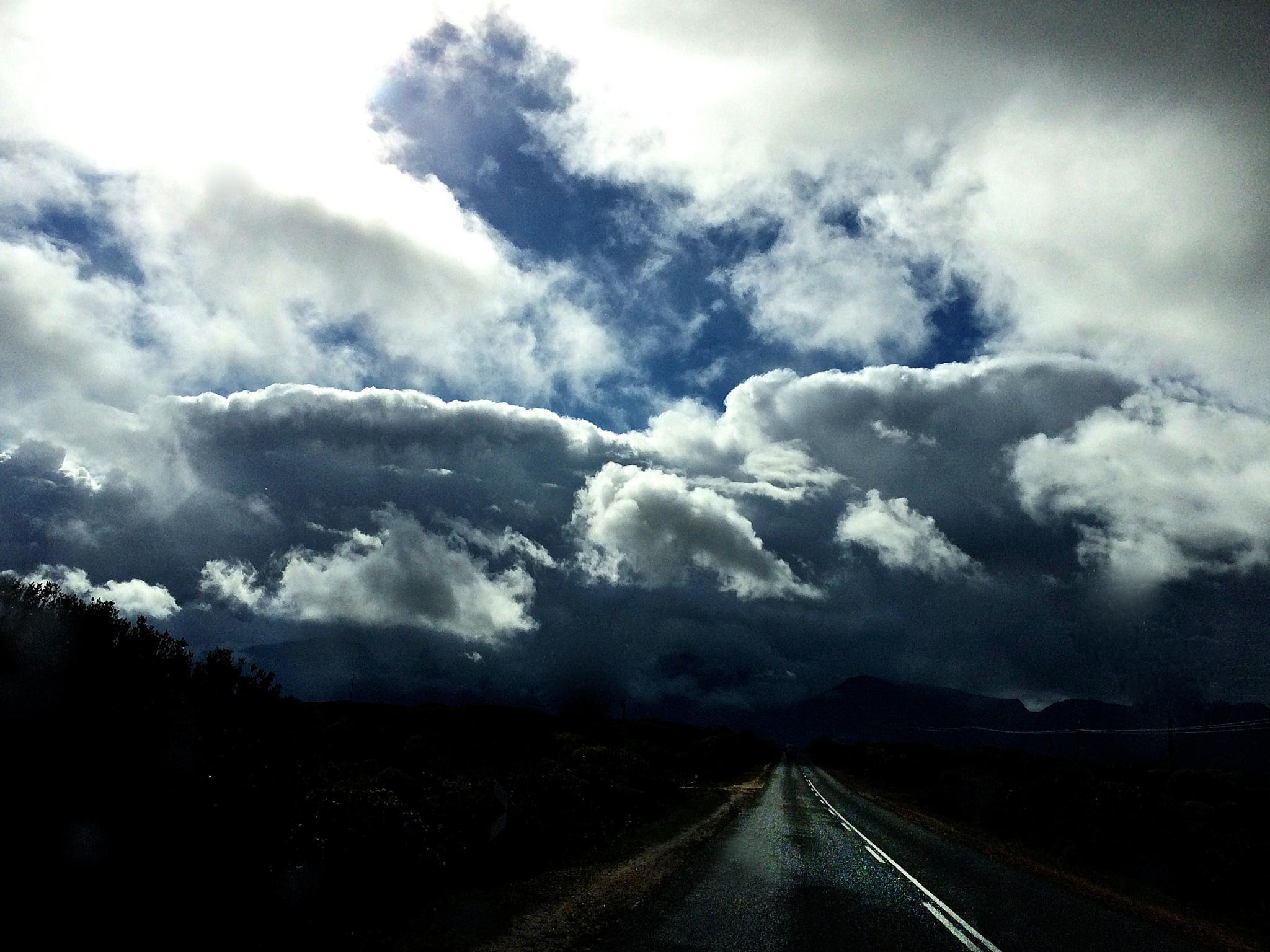 The Road to Stanford by Martha van der Westhuizen