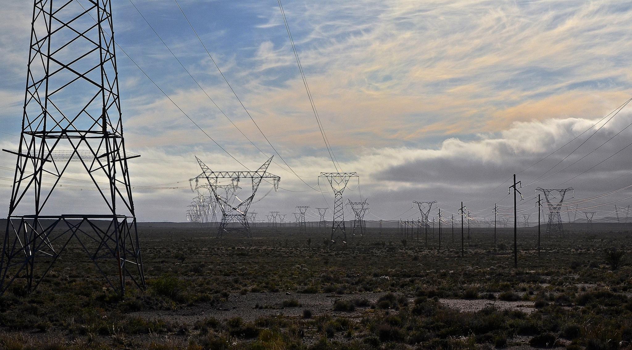 Power Pylons by Martha van der Westhuizen