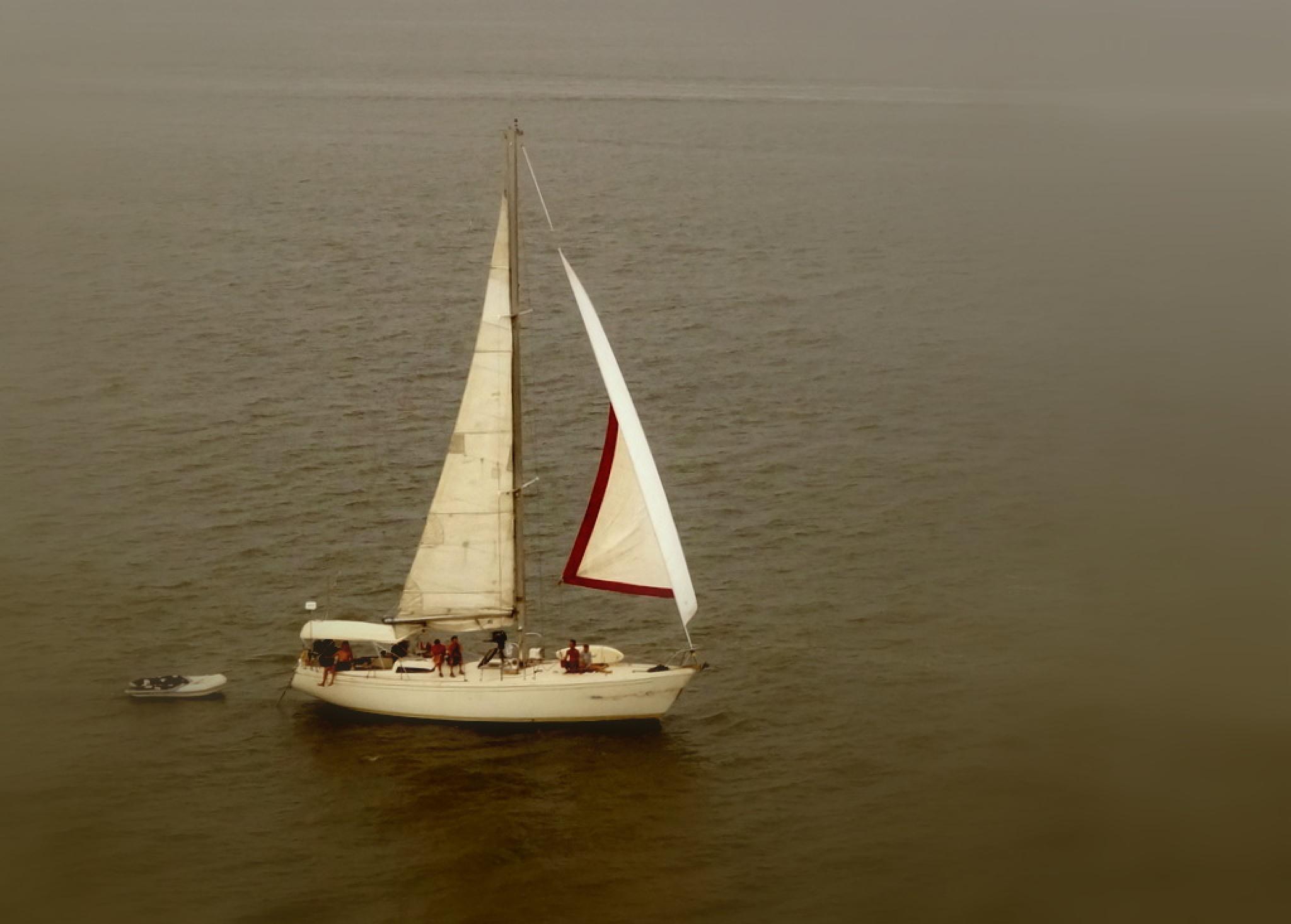 Sailboat Escort by Don Henninger