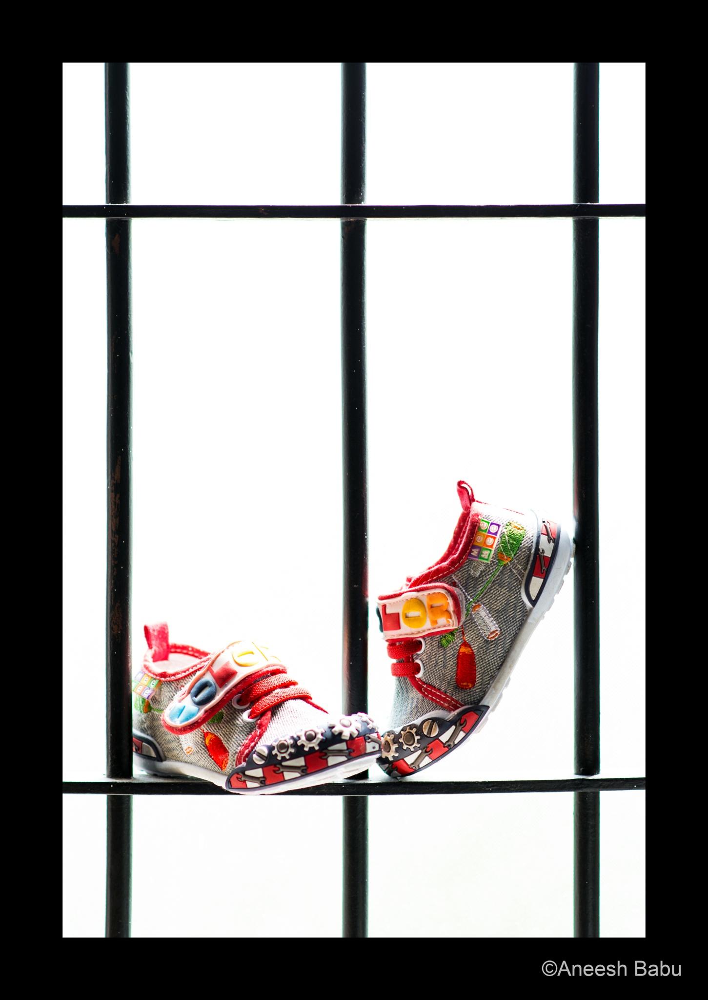The shoe by anipababu