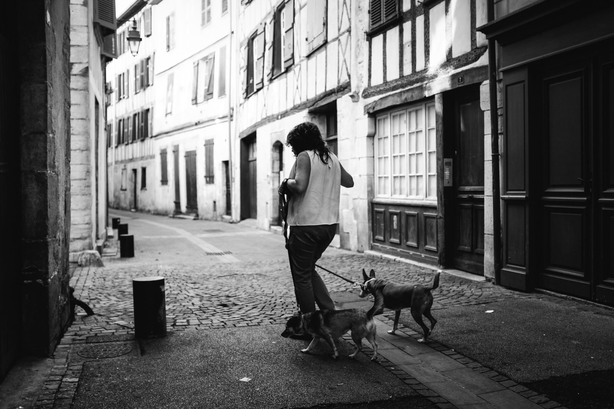 Dog sitter. by Cédric Ortiz