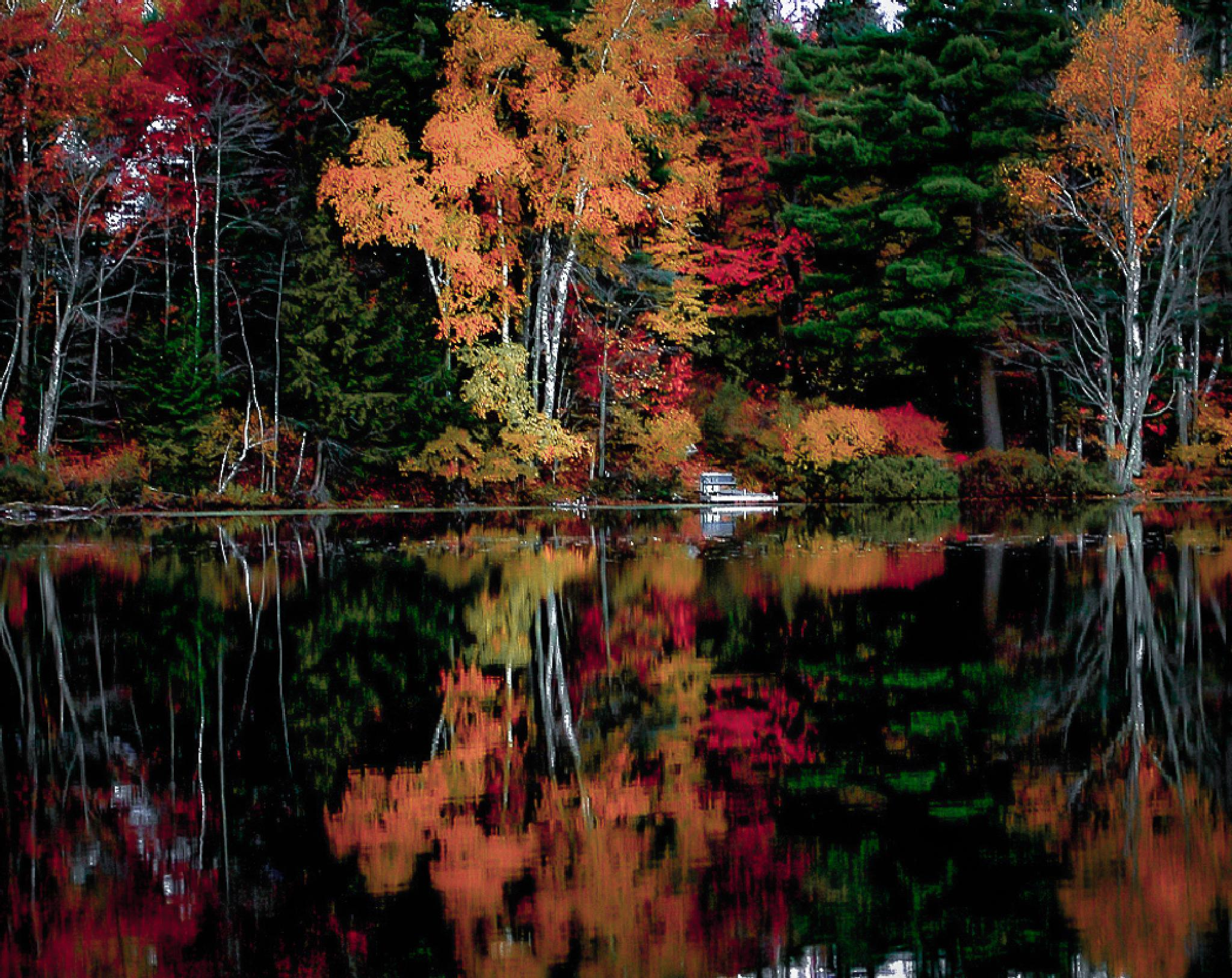 Northern Wisconsin Fall Colors by Michael A Haagen