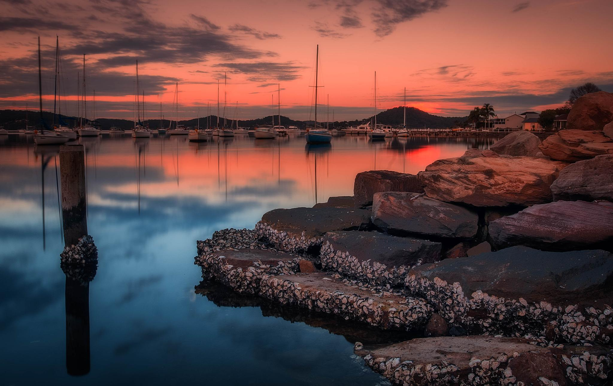 Back sunset by PepeRojas