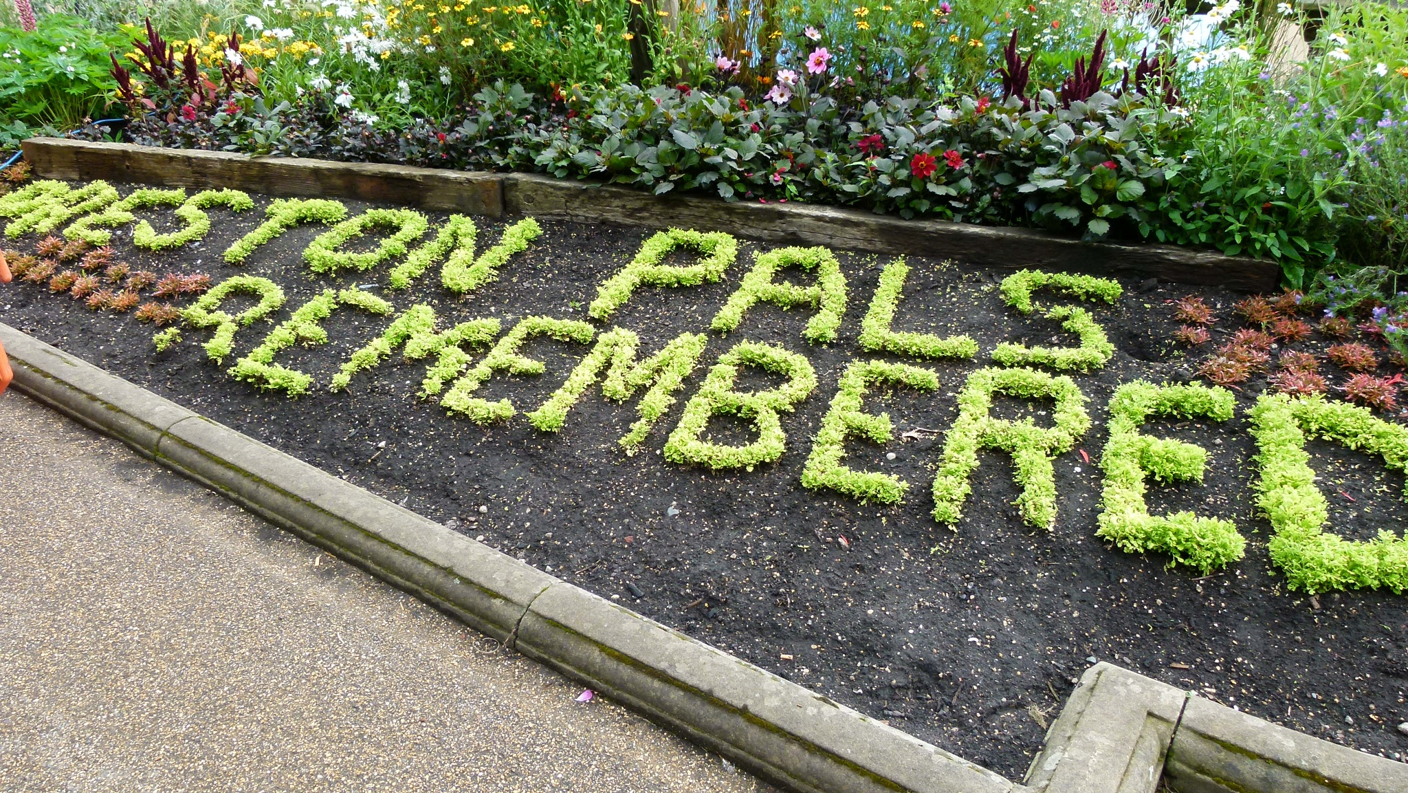Preston Pals Remembered by Alan