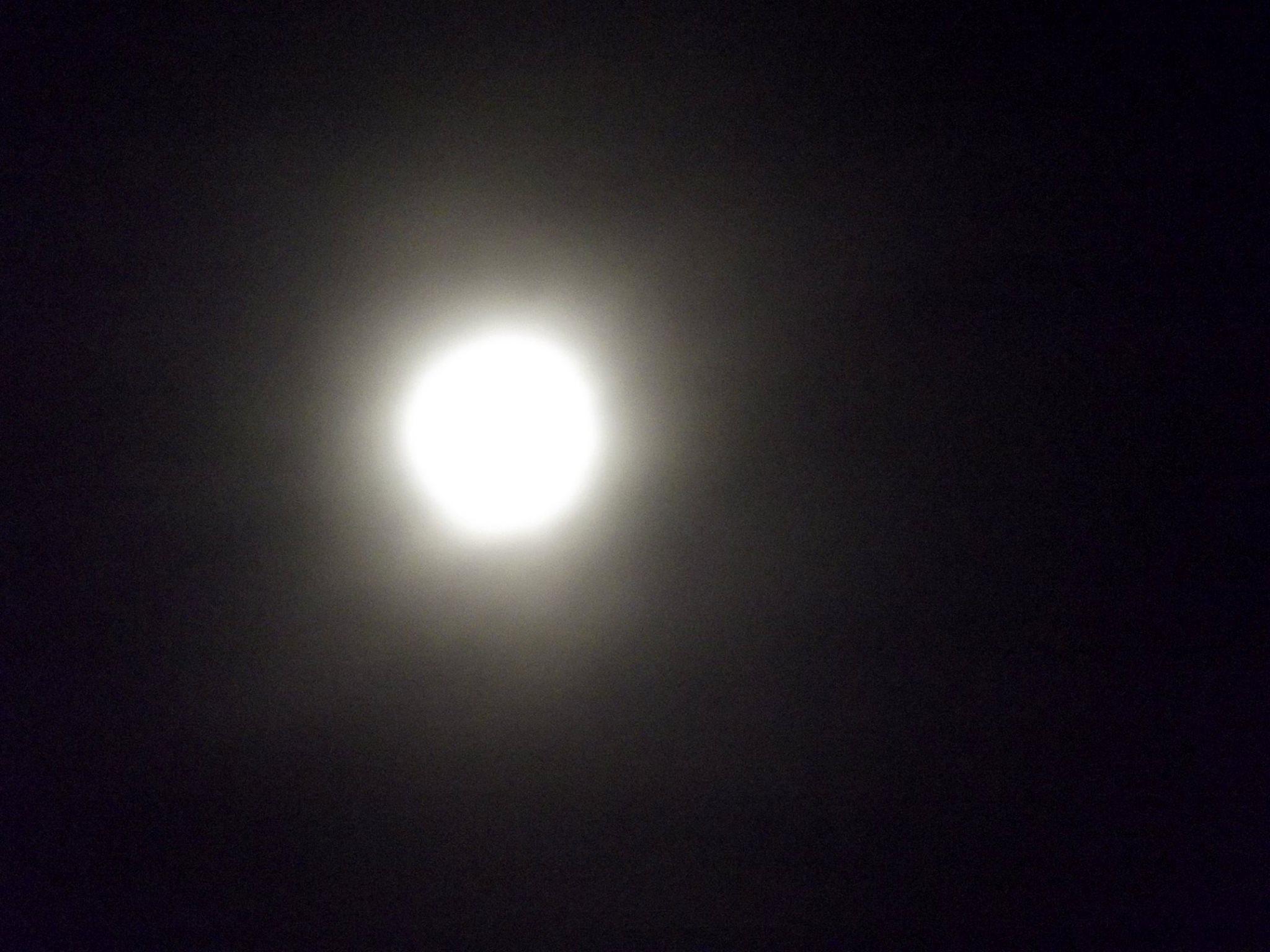 The Moon by BJ Sullivan