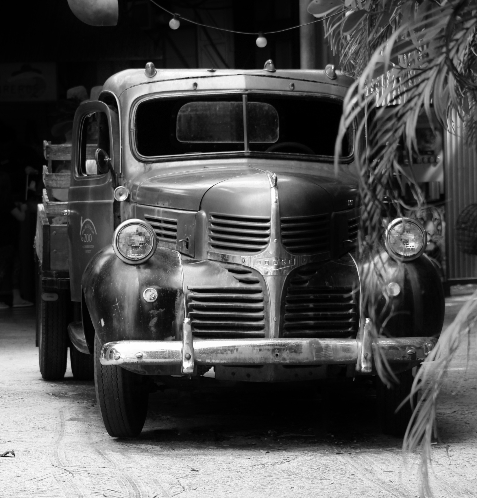 Photo in Vintage